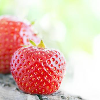 Auch Erdbeeren wachsen im eigenen Beet